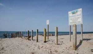 Beach barrier, Mike Maloney